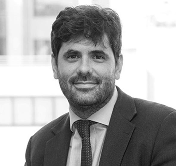 Gonzalo Trigo